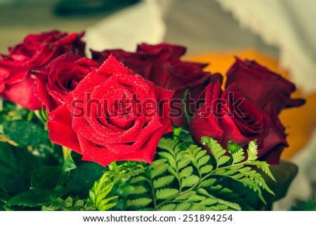 Red roses over valentines day - stock photo