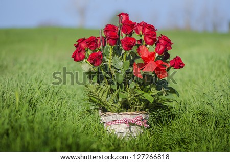red roses vintage - stock photo