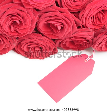 Red roses with blank tag for your copy isolated on white background - stock photo