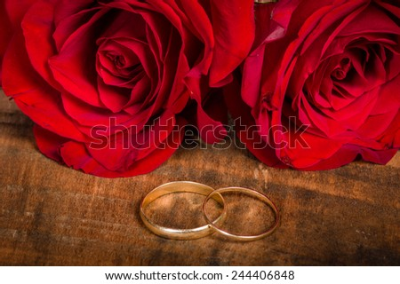 Red roses with gold wedding bands on a wood table - stock photo