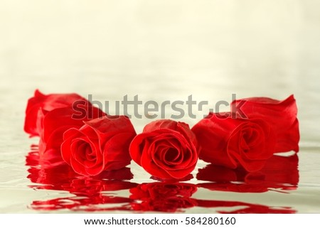 Red roses with reflection positioned in a circle
