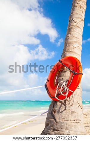 Red round life buoy hanging on the palm tree, sandy beach of Dominican republic