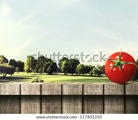 Red Round Tomato on a Wooden Fence - stock photo