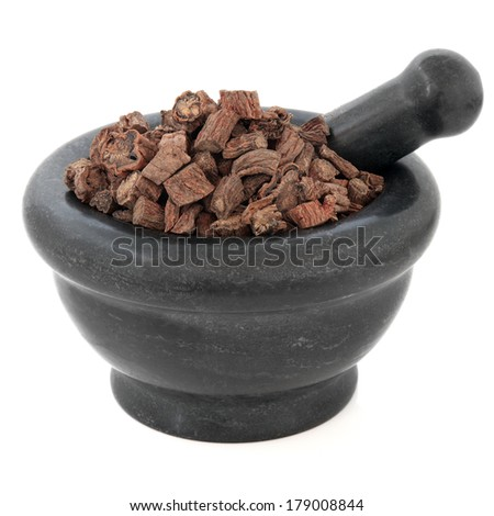 Red sage root chinese herbal medicine in a black stone mortar with pestle over white background. Dan shen. Salvia. - stock photo