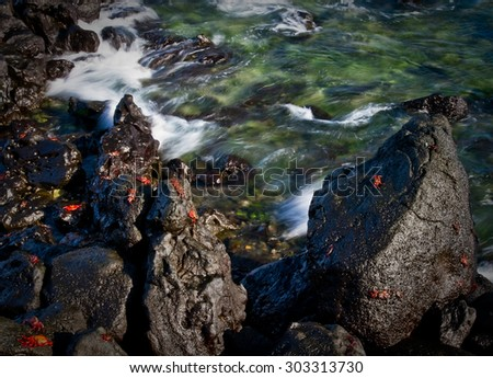 Red sally light foot crabs on a rock and waves movement, Galapagos Islands, Ecuador - stock photo