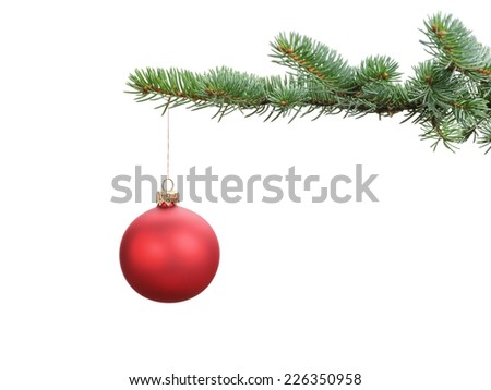 red satin glass ball hanging on christmas branch, isolated on white - stock photo