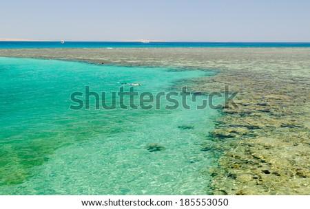 Red sea - stock photo