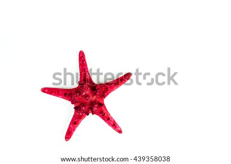 Red sea star isolated on white background