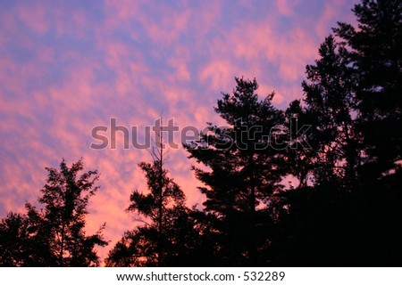 Red Sky at Night - stock photo