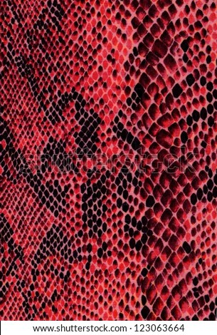 Red snake skin with pattern, reptile - stock photo