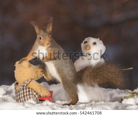 red squirrel standing with a snowman and on a bear