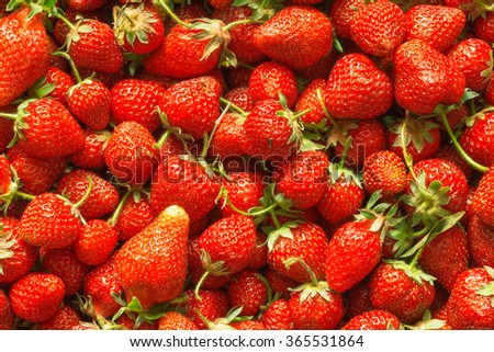 red strawberries in the background occupies the entire frame