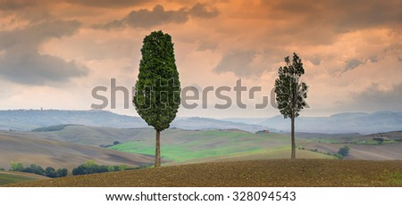 red sunset above trees in Tuscany in Italy