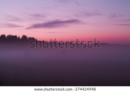 Red sunset in a foggy forest - stock photo