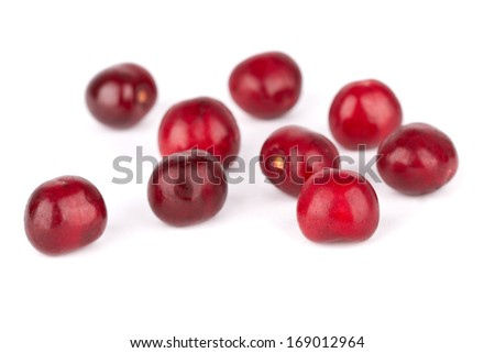 red sweet cherry berries isolated on a white