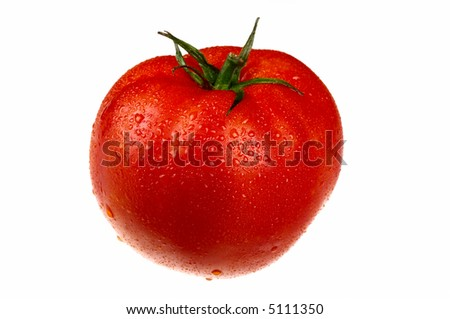 red tomato in drops isolated on white