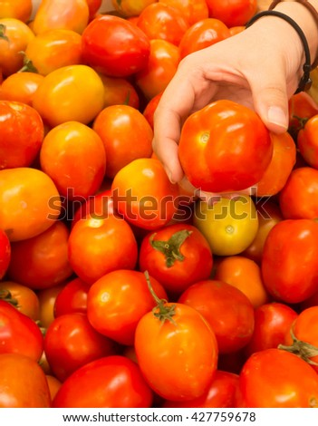 red tomatoes background. Group of tomatoes and Fresh tomatoes