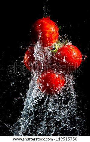 Red tomatoes washed in water drops isolated on black baclground - stock photo