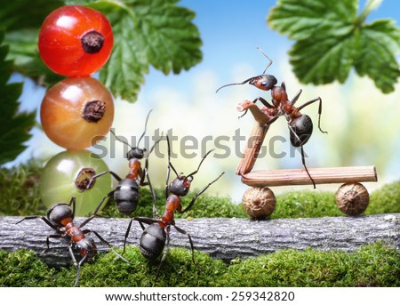 red traffic lights and bicycle loosing brake , ant tales - stock photo