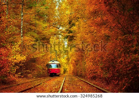 red tram in the deep sunny forest. natural autumn background - stock photo