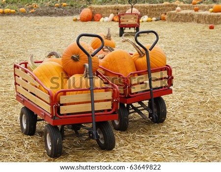 Red wagon full of pumpkins - stock photo