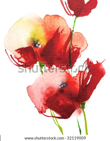 Red watercolor poppies on white, handpainted by photographer - stock photo