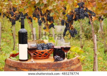 Red wine and grape autumn season