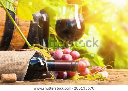 Red wine and grapes in bright sunlight - stock photo