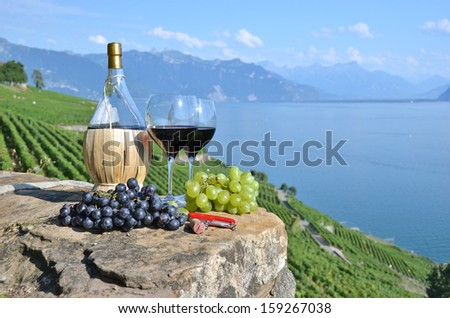 Red wine and grapes. Terrace vineyards in Lavaux region, Switzerland