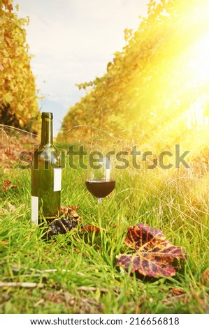 Red wine and grapes. Terrace vineyards in Lavaux region, Switzerland - stock photo