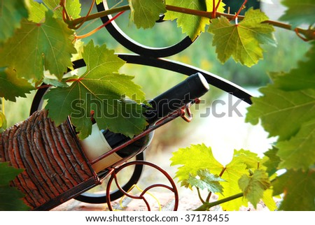 red wine bottle in decorative basket between vine leaves - stock photo
