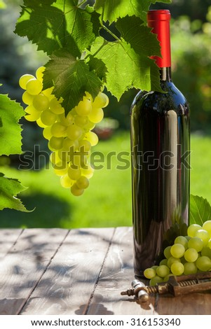 Red wine bottle, vine and bunch of grapes on garden table