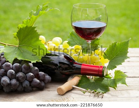 Red wine glass and bottle with bunch of grapes in sunny garden - stock photo