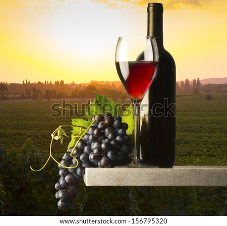 red wine glass in the wine - stock photo