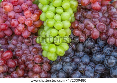 Red wine grapes on the market