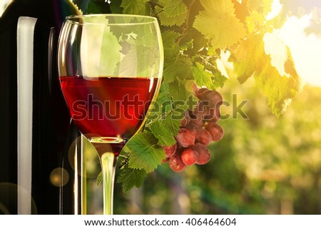 Red wine in glass and bottle on nature background - stock photo