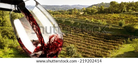 red wine in the vineyard - stock photo