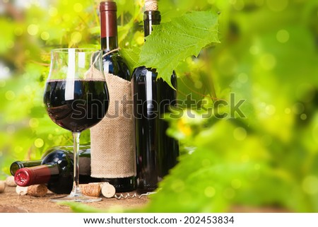 Red wine on a background of green grape leaves   - stock photo