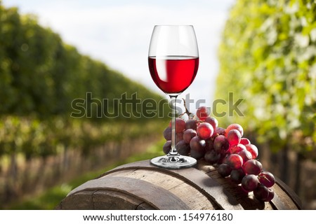 red wine on vineyard background - stock photo
