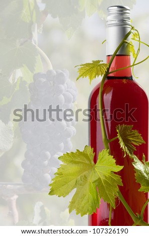 Red wine with a vine twisting around the bottle - stock photo