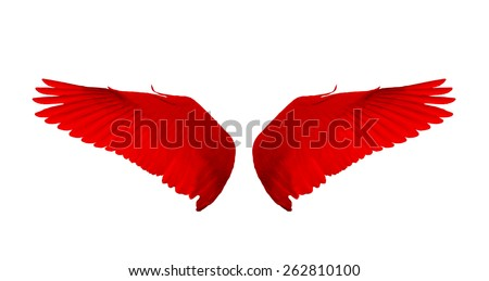 Red wings isolate white background. - stock photo