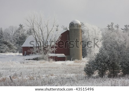 red Wisconsin dairy barn in winter with frosty trees - stock photo