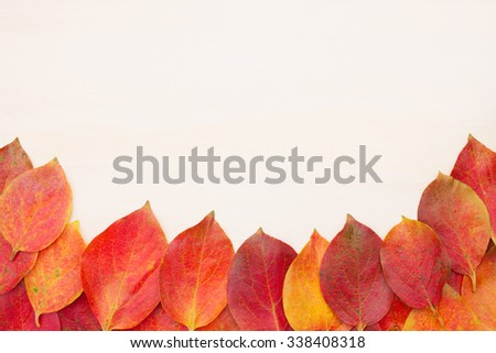 Red-yellow leaves stacked on the bottom on a board