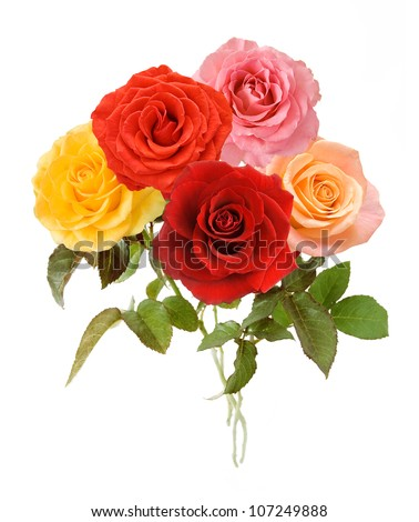 Red, yellow, pink, cream and vermilion roses bunch isolated on white background - stock photo