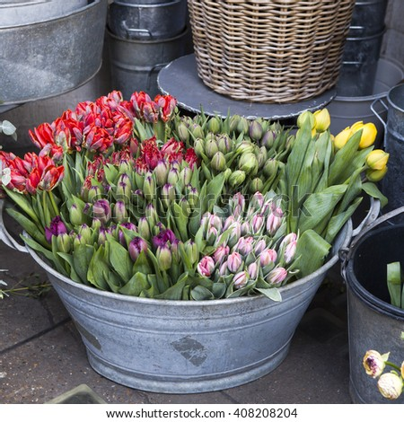 red, yellow, pink  spring tulips in  basket for sale on flower market - stock photo