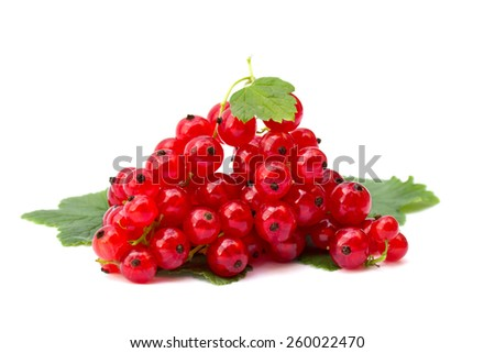 Redcurrants and green leaves on white background