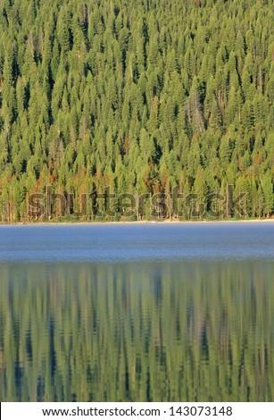Redfish Lake and Pine Trees at Sunrise, Idaho - stock photo