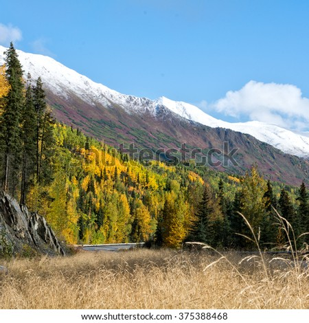 Reds and golds cover the hillside along the Sterling Highway on Alaska's Kenai Pennisula. - stock photo