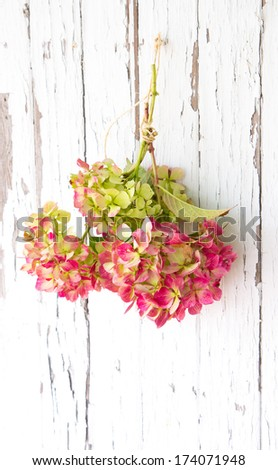reed and pink hydrangea wreath hanging on a white painted door - stock photo