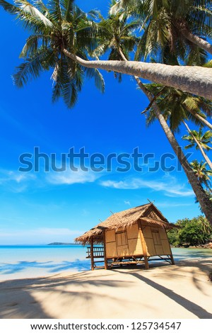 Reed hut on a sandy beach. Coconut palms against the clear blue sky.